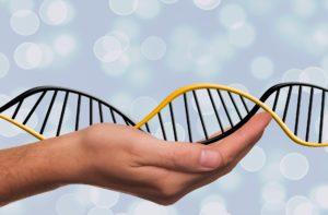 DNA reset